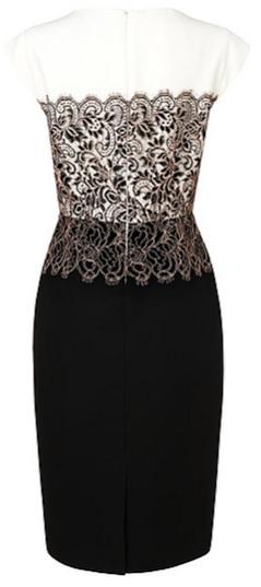 Lace Dress LK Bennett bak