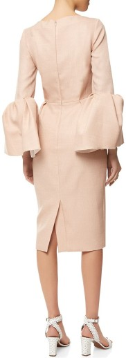 Roksanda Dress bak