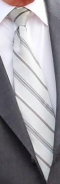 20190524 Statsbesök på Irland slips.jpg